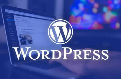 Professional WordPress Training