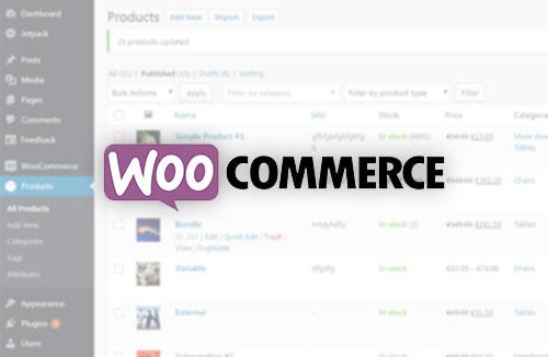 Woocommerce setup and Customizations Training