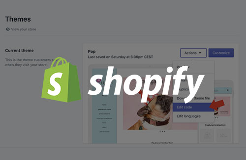 Shopify Custom theme Training
